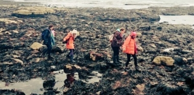Stumps, Stacks and Fish and Chips for Geographers